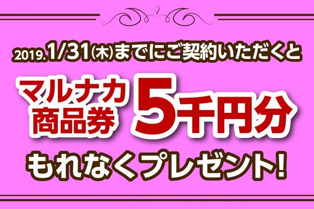 5,000円キャンペーン