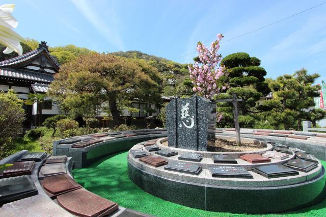 新・桜の樹木葬-2021.04-1