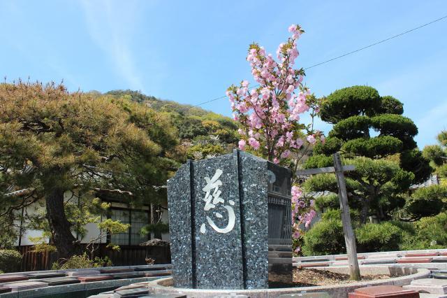 新・桜の樹木葬-2021.04-2